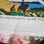 Flyergestaltung Illustration Grafikdesign Werbeagentur Anja Wießmann MV